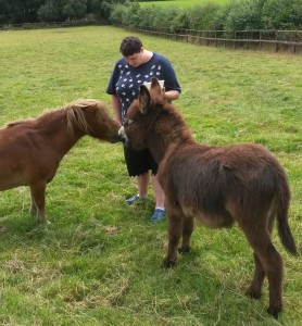 Colleen with Horse & Donkey
